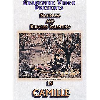 Importer des USA [DVD] Camille (1921)