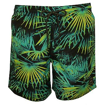 O'Neill Bondi Palms Print simma Shorts, svart/grön/blå