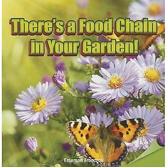 Er is een voedselketen in uw tuin!