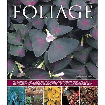 Feuillage: An Illustrated Guide to variétés, de culture et de soins, avec des Instructions étape par étape et plus de 150...