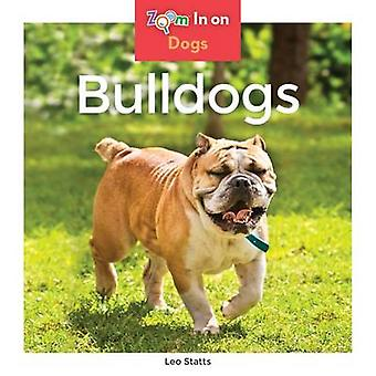 Bulldogs by Leo Statts - 9781680791723 Book