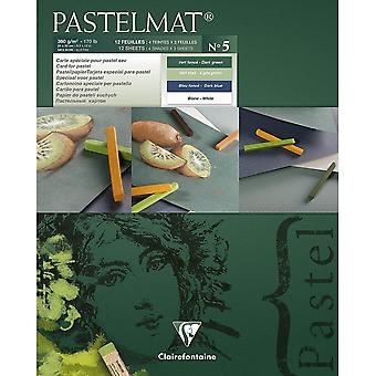Clairefontaine Pastelmat Pad 360g No5| Sizes Listed