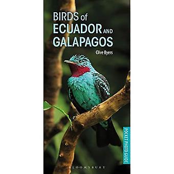 Uccelli di Ecuador e Galapagos (Pocket Guide fotografiche)