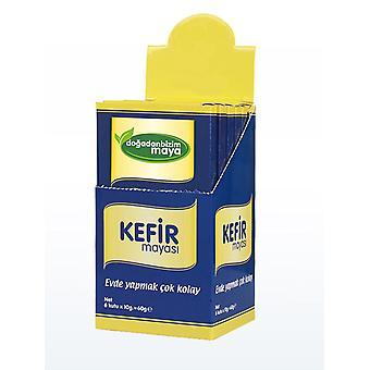 Kefir jäst, lätt för Kefir, probiotisk jäst vuxen och barn, make, jäst lätt