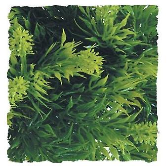 Zoo Med Malaysian Fern Plant - 1 count