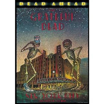 Grateful Dead - død Ahead [DVD] USA import