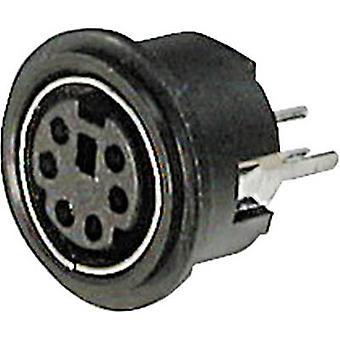 ASSMANN WSW A-DIO-TOP/06 Mini DIN konnektör Soketi, dikey dikey pim sayısı: 6 Siyah 1 adet(ler)
