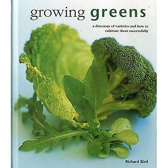 Växande gröna: En katalog av sorter och hur man odlar dem framgångsrikt