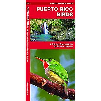 Puerto Rico Vögel (Pocket Naturalist Guide)