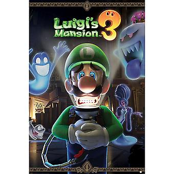 Luigis Mansion, Maxi Juliste - In varten pelästynyt