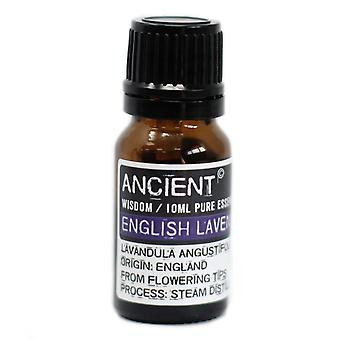 English Lavender Essential Oil 10ml