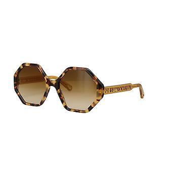 Chloe Willow CE750S 846 Havana-Honey/Yellow Gradient Sunglasses