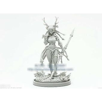 28248 Wargames Druid Limited -painos