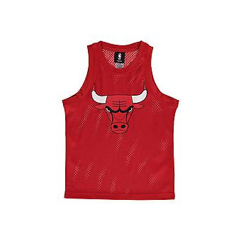 NBA Chicago Bulls Mesh Jersey Junior