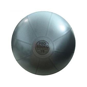 اللياقة البدنية جنون 500Kg الكرة السويسرية لاستوديو جيم ممارسة اللياقة البدنية التدريب 75cm