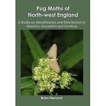 Pug nachtvlinders uit Noordwest-Engeland: een gids over identificatie en distributie in Cheshire, Lancashire and Cumbria