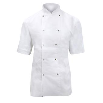 Dennys Ladies/Womens Short Sleeve Chefs Jacket / Chefswear (Pack of 2)