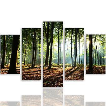 Imagen de cinco partes sobre lienzo, Pentaptych, tipo A, rayos del sol en el bosque