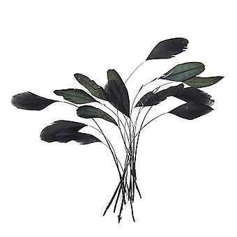 Plumas, Negro, 15pcs