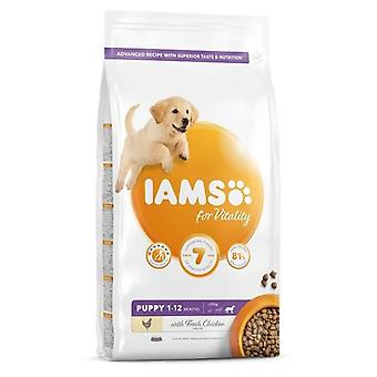 Iams Vitality Puppy Large Breed Chicken Dog Food