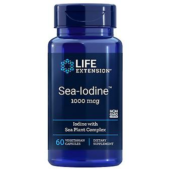 تمديد الحياة البحر اليود، 1000 ميكروغرام، 60 قبعات