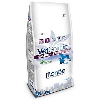 Monge Vet Solution Gastrointestinal (Dogs , Dog Food , Dry Food)