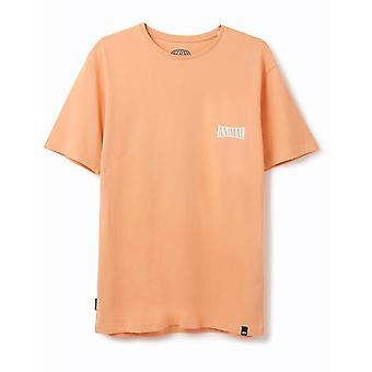Animal Sconna Short Sleeve T-Shirt in Coral Sands Orange