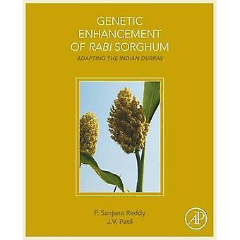 Genetische Enhancement van Rabi sorghum door Patricia Reddy
