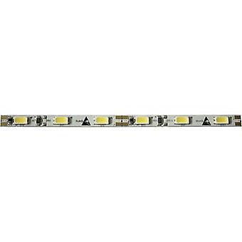Barthelme 50050634 50050634 LED páska otevřené konce kabelů 12 V 50 cm