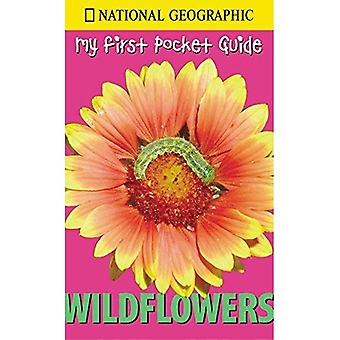 My First Pocket Guide Wildflowers