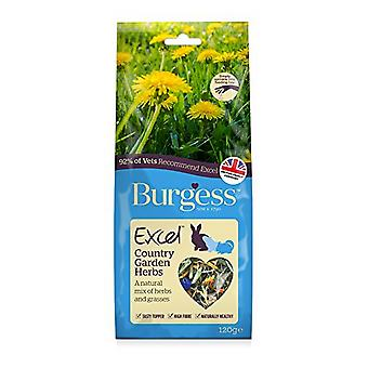 Burgess Excel Snack Country Garden Herbs Small Animal Food (6 Packs)