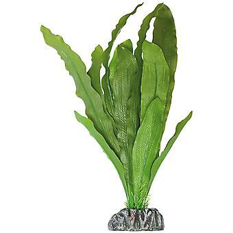 Su Bitkileri Planta de Plástico Echino Parviflorus