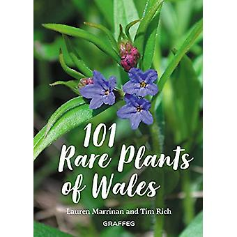 101 Rare Plants of Wales by Tim Rich - 9781913134037 Book