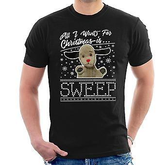 Noke joulu Kaikki mitä haluan jouluksi on Sweep Men's T-paita