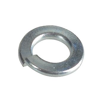Forgefix Spring Lavadoras DIN127 ZP M6 Forge Pack 60 FORFPSW6