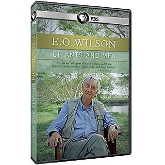 E.O. Wilson: Of Ants & Men [DVD] USA import