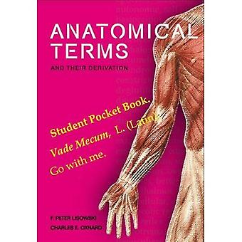 Anatomical Terms and Their Derivation