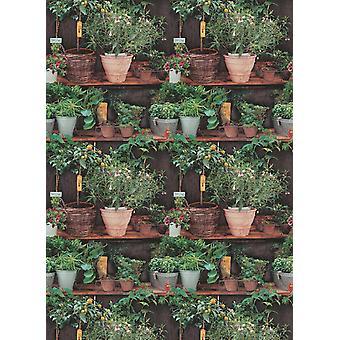 Potted Plants Wallpaper Floral Botanical Kitchen Paste The Wall Vinyl Erismann