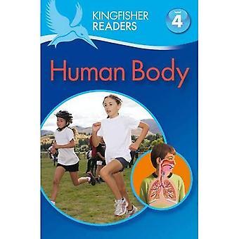 Ijsvogel lezers: Menselijk lichaam (niveau 4: lezen alleen)