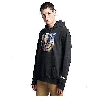 Element kvadrant säsonger Pullover Hoody i Charcoal Heather