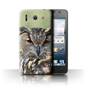 STUFF4 Case/Cover for Huawei Ascend G510/Eagle Owl/Birds of Prey