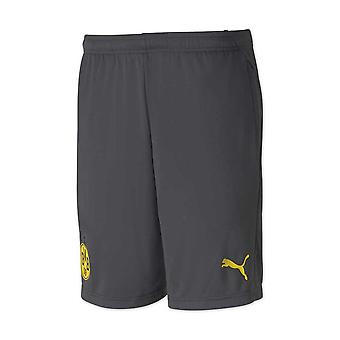 2020-2021 Borussia Dortmund Training Shorts Zip (Asphalt)
