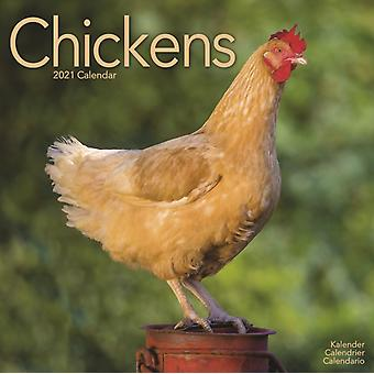Chickens 2021 Wall Calendar by Avonside Publishing Ltd