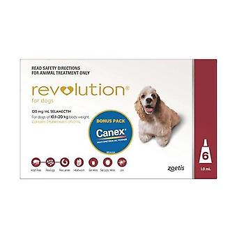 Revolution rot 6 verpacken