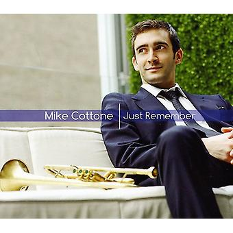 Mike Cottone - bare husk [CD] USA import