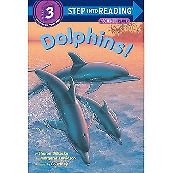 Dolphins!: Step into Reading, a Step 2 Book (Step Into Reading - Level 3 - Paperback)