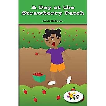 Une journée à la fraise Patch (lecteurs de Rosen Real: tige et Collection de vapeur)