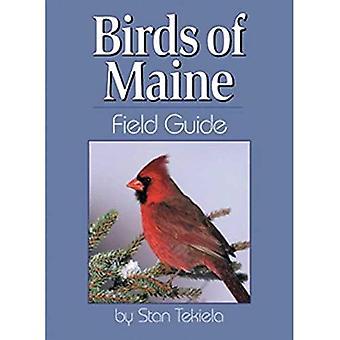 Oiseaux du Maine Field Guide (nos Guides naturalistes de terrain)