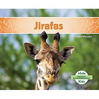 Jirafas (Giraffes) by Grace Hansen - 9781624026942 Book