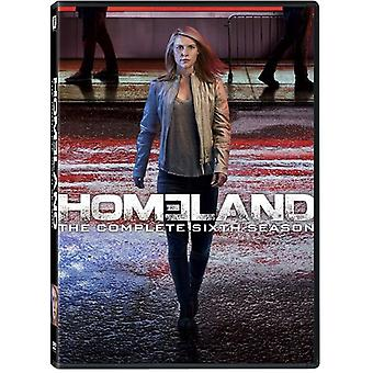 Homeland: Season 6 [DVD] USA import